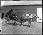 Horse-Drawn Carriage;Barn;